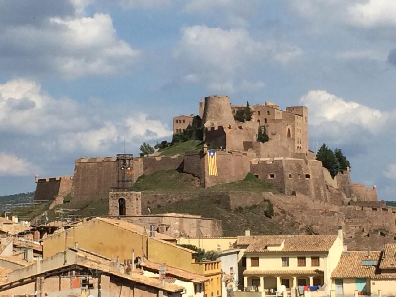 AMI- Estelada-Castell-Cardona
